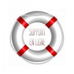 Support en Ligne