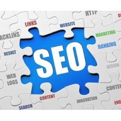 Option pour Shop Online - SEO LINKING - Référencement Naturel Google